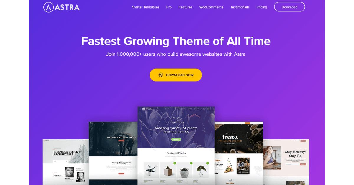 Astra - Premium WordPress Theme