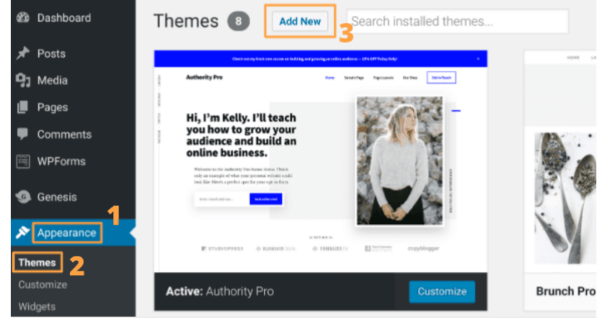 WordPress - How To Install Themes