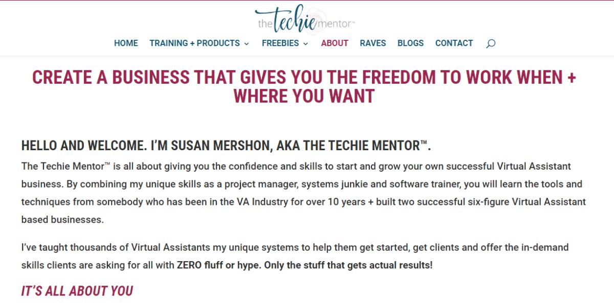 The Techie Mentor