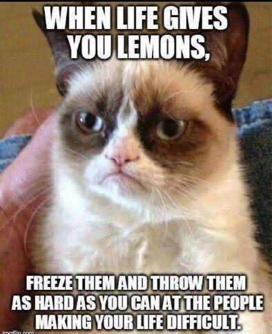 when life gives you lemon meme 1