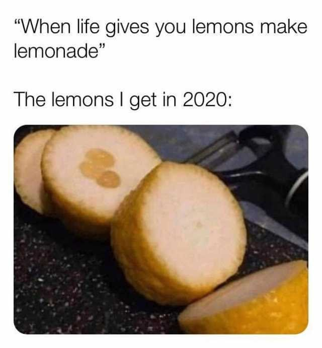 when life gives you lemons meme 2